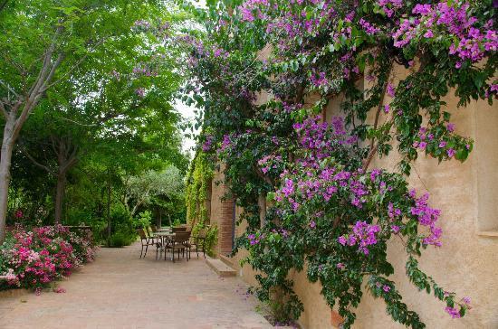 El Moli de Siurana: terraza delante del jardin