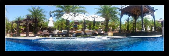 Ammatara Pura Pool Villa: Piscine et spa