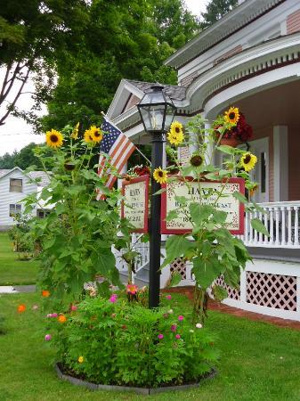 Haven Guest House Bed & Breakfast: Enjoy the Garden