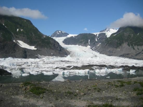 Pederson Glacier view