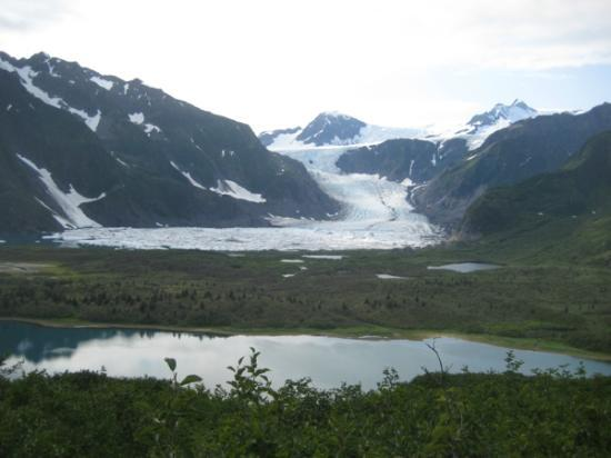 Birds eye view of the Pederson Glacier