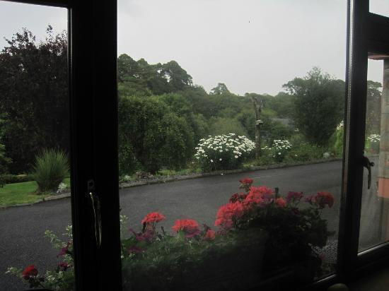 O'Shea's Ceol Na Habhann: View from bedroom out onto driveway 