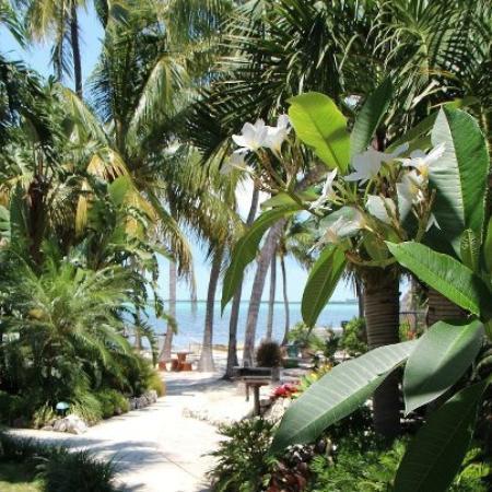 Kona Kai Resort, Gallery & Botanic Garden: Path to the beach area