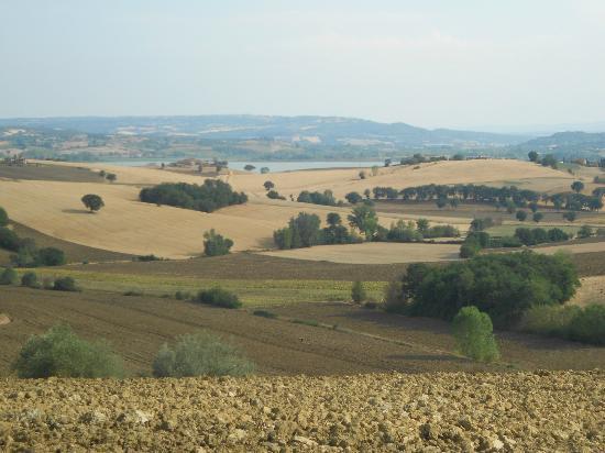 Locanda Poggioleone: dintorni