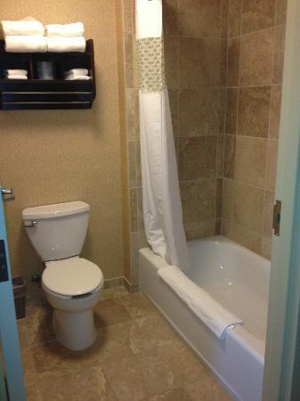 Hampton Inn & Suites Billings West I-90: Bathroom Rm 432