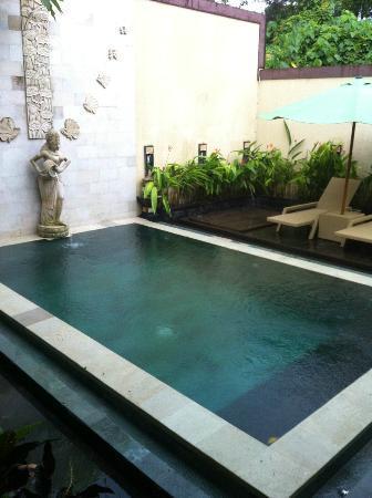 Narandha & Tierandha Villa Seminyak : psicina privada