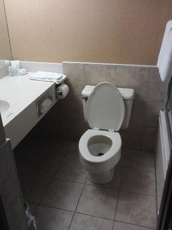 Rodeway Inn: sink/toilet