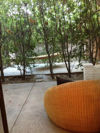 Parker Palm Springs: The Patio U0026 Hammock