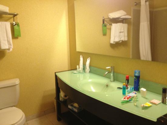 Clarion Inn & Suites Atlantic City North : beautiful bathroom