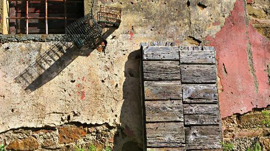 Ventena Vecchia - Antico Frantoio: Impressionen Ventena Vecchia 2