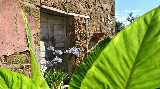 Ventena Vecchia - Antico Frantoio: Impressionen Ventena Vecchia 1