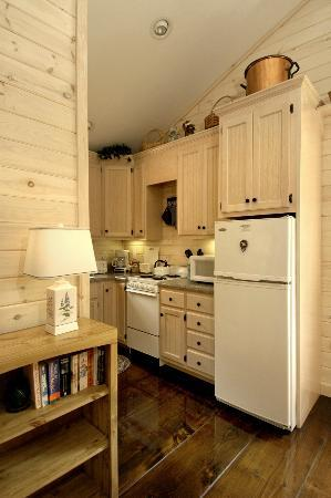 Fernwood Cottage: Kitchenette in Bluebird Suite
