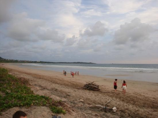 Beach - Picture of La Marejada Hotel, Playa Grande - Tripadvisor