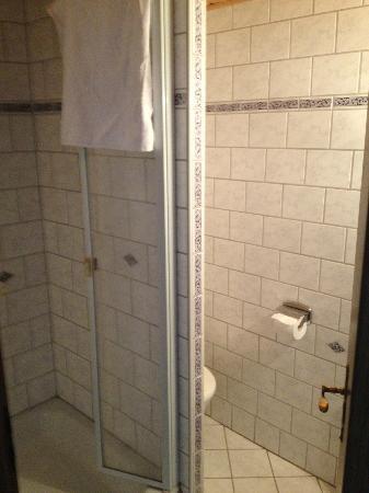 Haus Muehlbach: Duschkabine (sehr sauber!)
