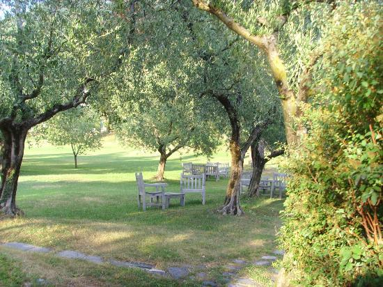 Agriturismo Castello di Vezio: Shaded area under olive trees