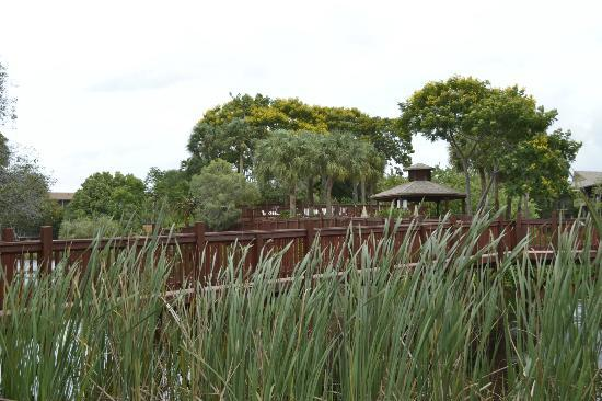 Park Shore Resort: The bridge/walkway over the lagoon
