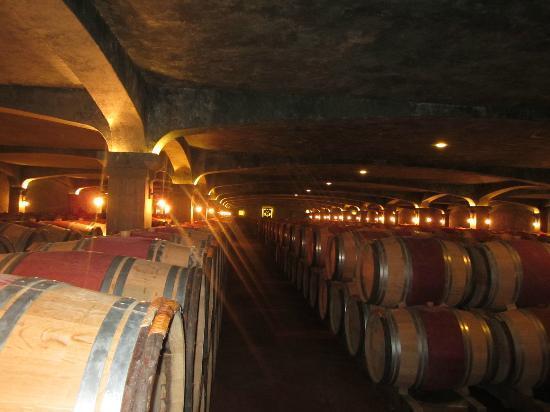 Chateau Smith Haut Lafitte : Cellar