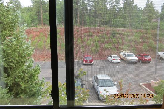 Best Western Plus Inn Of Williams: Looking out window