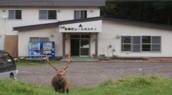 Shiretoko Iwaobetsu Youth Hostel