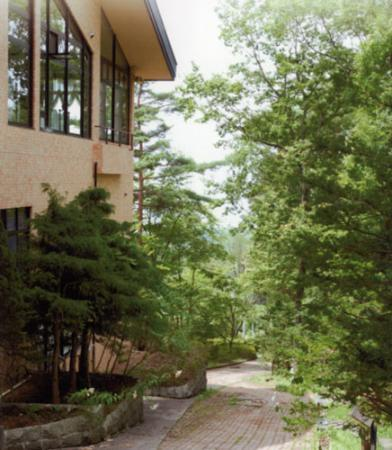 Sakura Resort