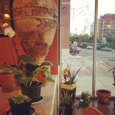 Agora Bar and Grill : abundant plants