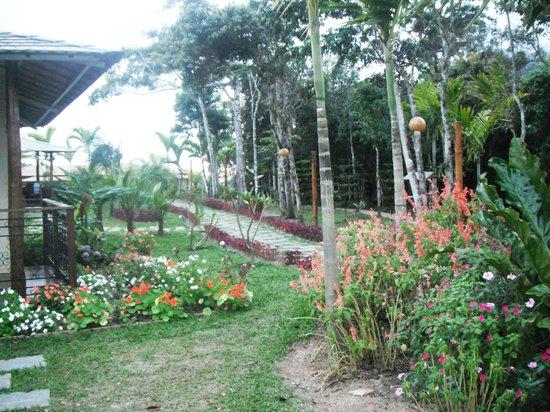 Guaramiranga, CE: a´rea para caminhada