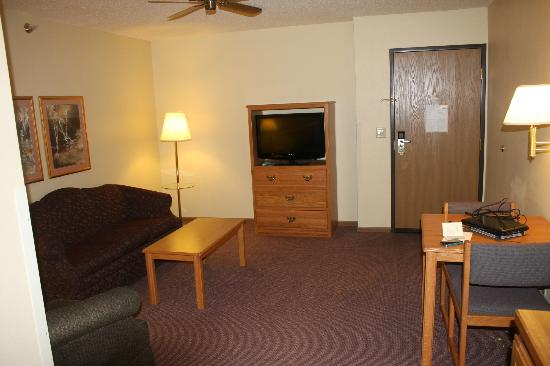 Country Inn By Carlson, Grand Rapids: Couch/hide-a-bed and 2nd tv