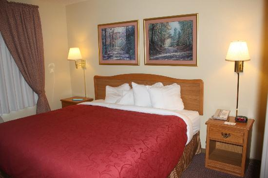 Country Inn By Carlson, Grand Rapids: Cosy king size bed