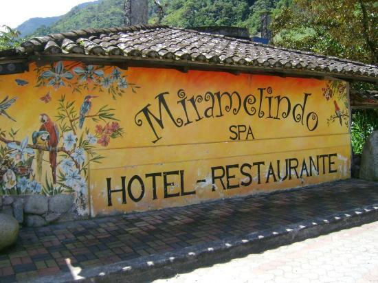 Miramelindo Spa Hotel: Afuera del hotel