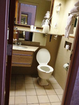 Best Western Watertown Fort Drum: Very small bathroom