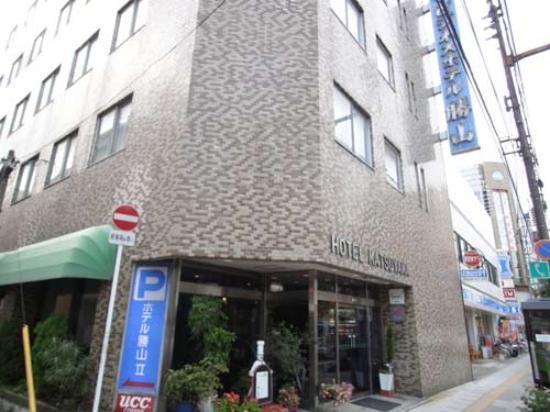 Business Hotel Katsuyama : 外観写真