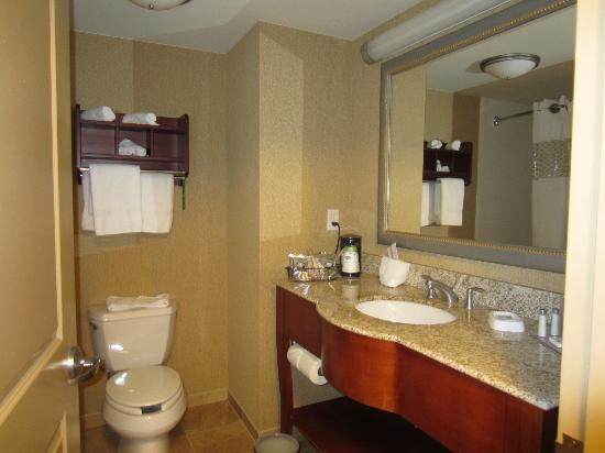 Hampton Inn Nashua: Bathroom