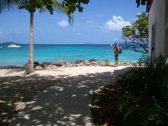Cinnamon Bay Nature Trail: The Beach at the bottom of the trail
