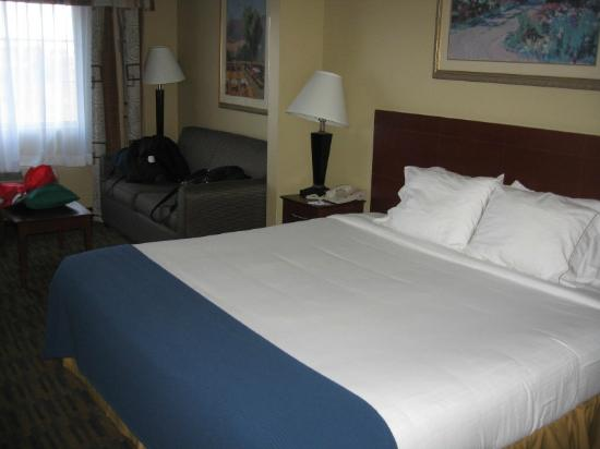 Holiday Inn Express Hotel & Suites Watsonville: Bed and comfy sofa