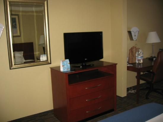 Holiday Inn Express Hotel & Suites Watsonville: TV