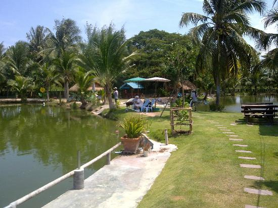 Hua Hin Fishing Lodge: View from restaurant to bottom pond