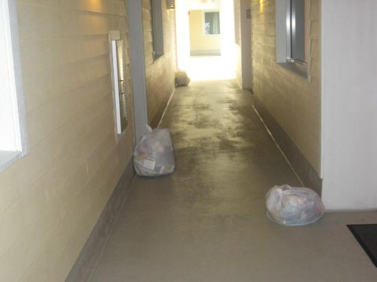 Harbour House at the Inn: Garbage bags along the halls