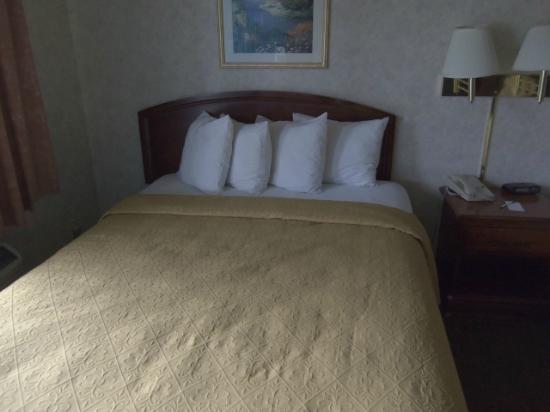 Quality Inn - Flagstaff / East Lucky Lane : Bed