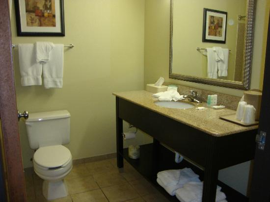 Quality Inn: Pretty big bathroom