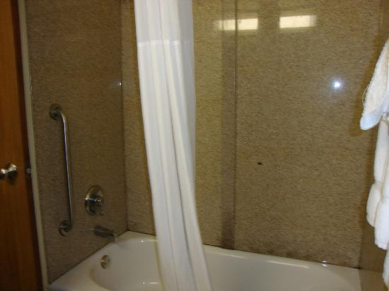 Quality Inn: Moldy shower, slow to drain