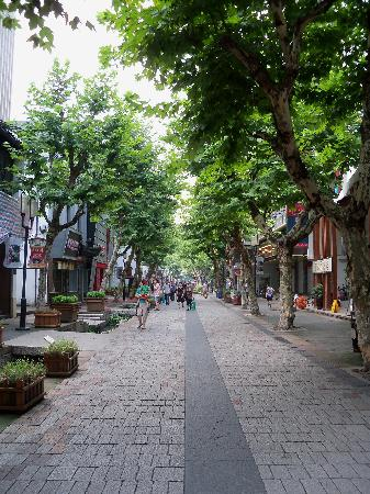 Ibis Hangzhou Nansong Yujie : The old street where the hotel reside