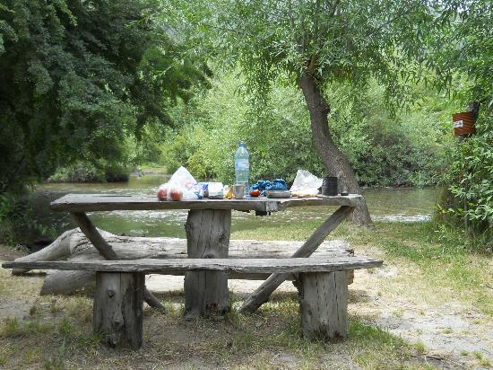 Camping & Hostel Los Coihues: Camping