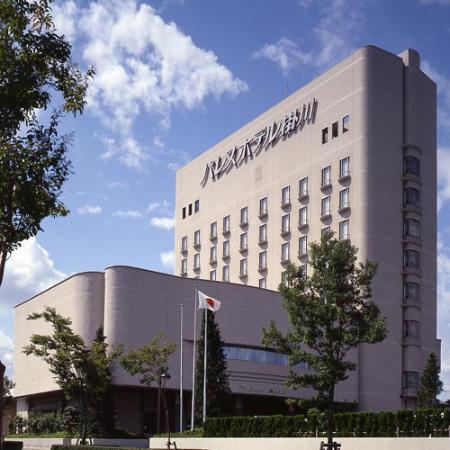 Palace Hotel Kakegawa