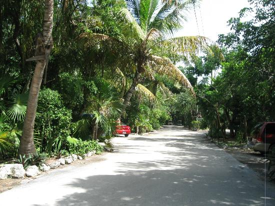 Banana Bay Resort and Marina Marathon: driveway on grounds