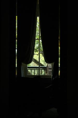 Ant Street Inn: Window View in New Orleans Room