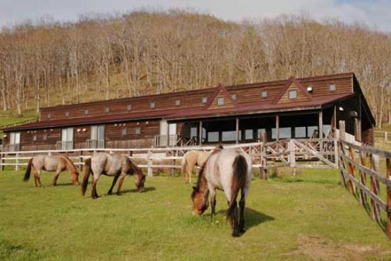 Tsurui Dosanko Farm