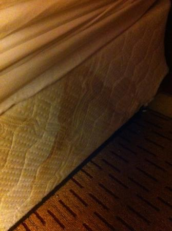 Clackamas Inn & Suites: virgin Mary and child stain? either way it was lovely knowing I was sleeping on that. mattress.