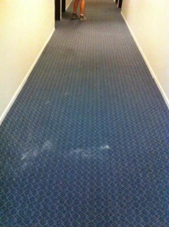 Jolly Roger Hotel: moquette nel corridoio