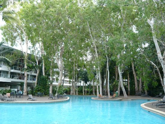 Grand Mercure Rockford Esplanade Palm Cove: The biggest and most attractive pool in Palm Cove