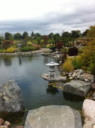 Grosvenor Pulford Hotel & Spa : Asian Gardens. So tranquil an peaceful.